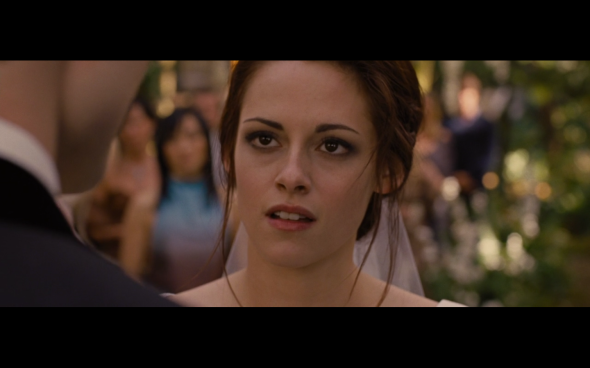 Twilight Saga Breaking Dawn Part 1 - 1305