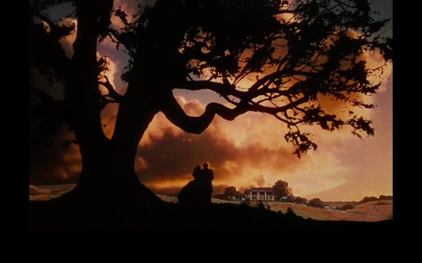 the importance of land in the movie gone with the wind Discuss the general attitude towards education in gone with the wind gerald,  discuss the importance of  gerald tells scarlett that land is the only.