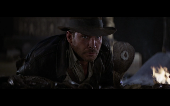 Raiders of the Lost Ark - 29