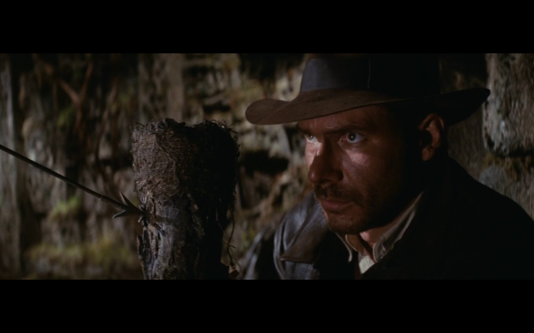 Raiders of the Lost Ark - 100