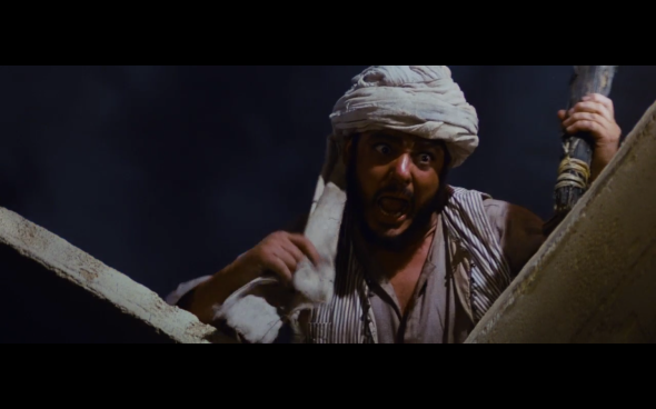 Raiders of the Lost Ark - 1119