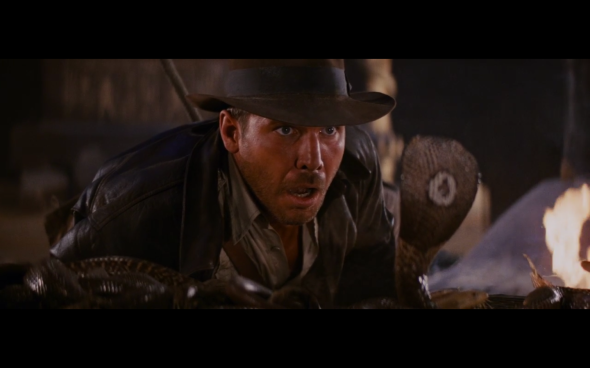 Raiders of the Lost Ark - 1194