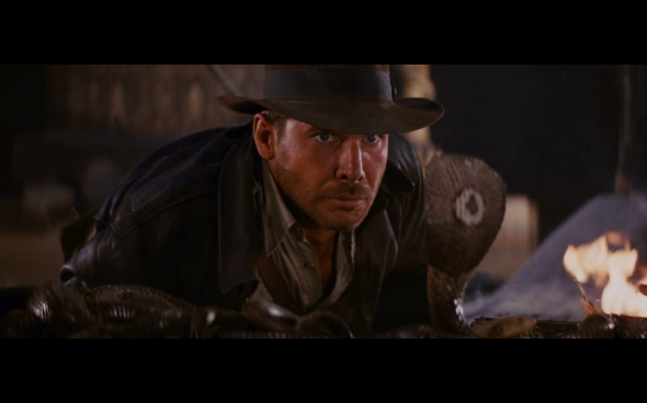 Raiders of the Lost Ark - 1195