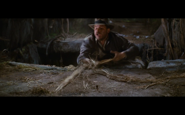 Raiders of the Lost Ark - 176