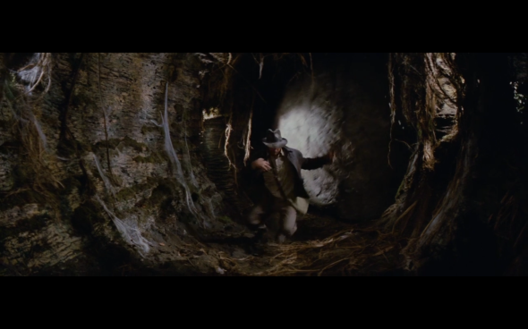 Raiders of the Lost Ark - 204