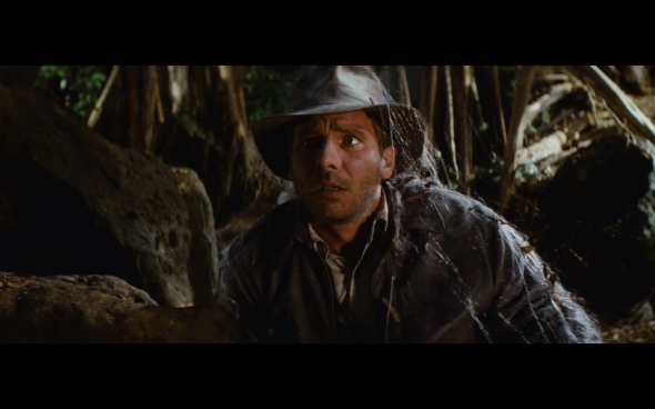 Raiders of the Lost Ark - 222