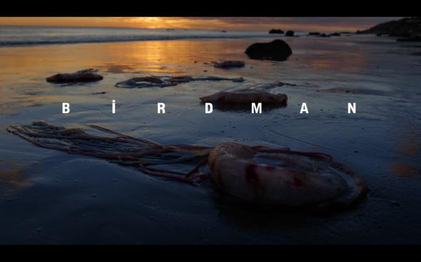 Birdman - Title Card 2