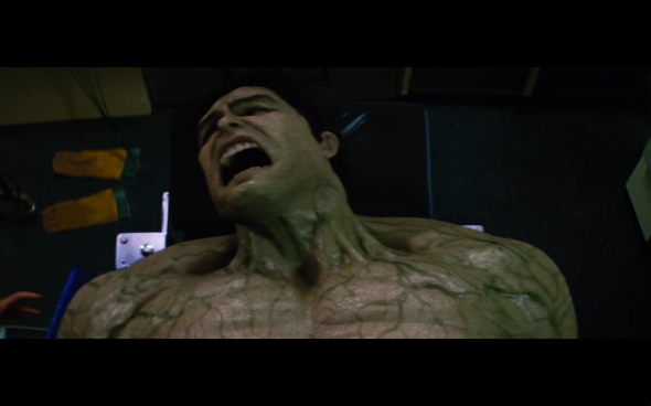 The Incredible Hulk - 1313