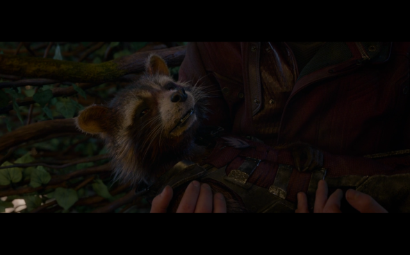Guardians of the Galaxy - 2629
