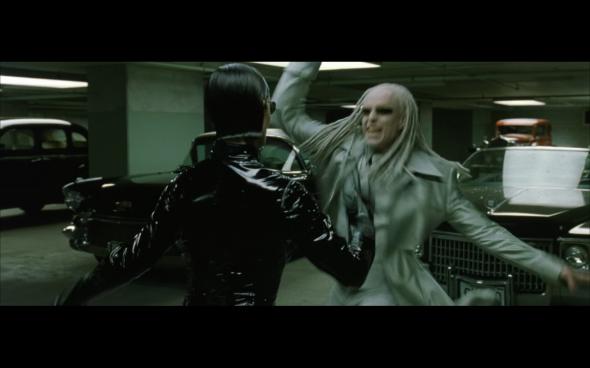 The Matrix Reloaded - 1238q