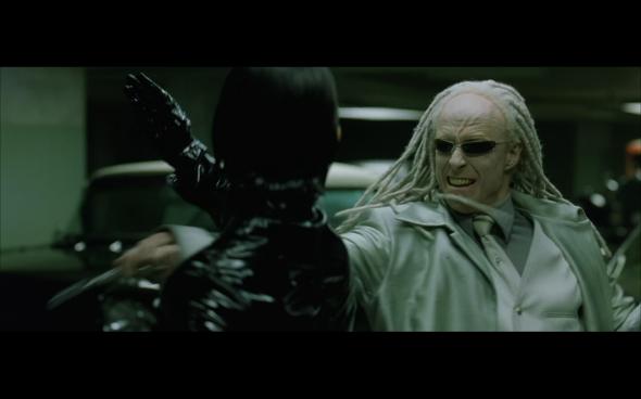 The Matrix Reloaded - 1238v