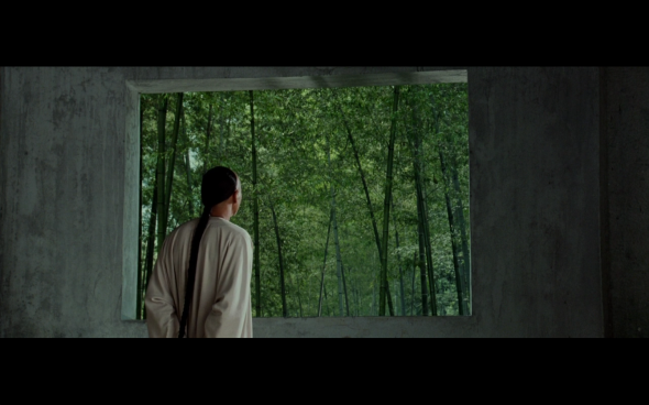 Crouching Tiger, Hidden Dragon - 45